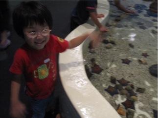 水族館と、ひろさんち